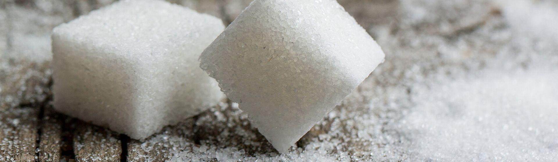 cukor datovania NYC